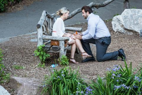 Tips for the Perfect Marriage Proposal in New York City